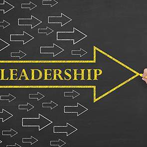 Sales Leadership Training